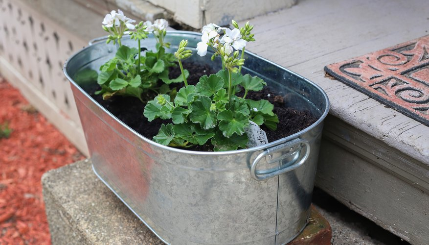 Big Tubs Allow More Space For Plants.