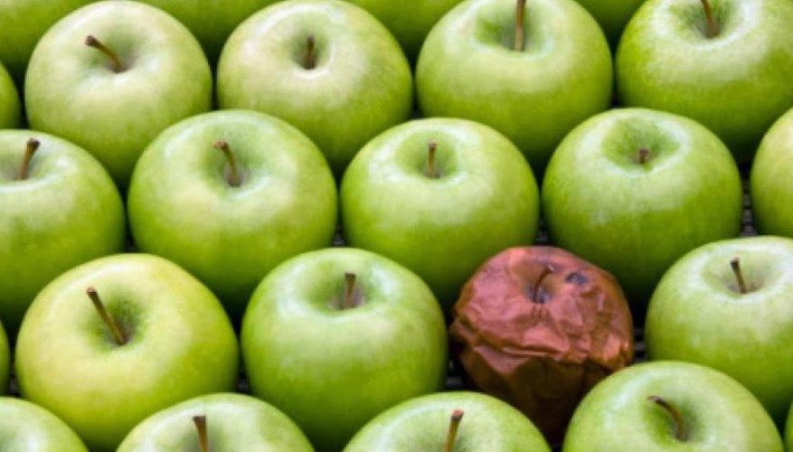 Imagen de una manzana podrida entre otras frescas