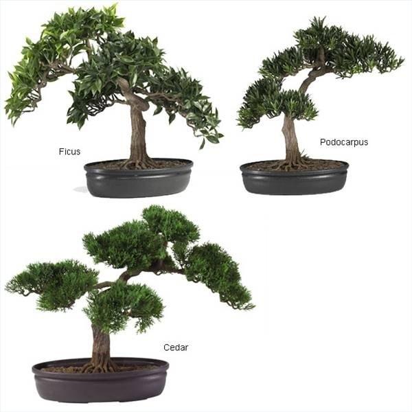 How To Make Artificial Bonsai Trees Ehow