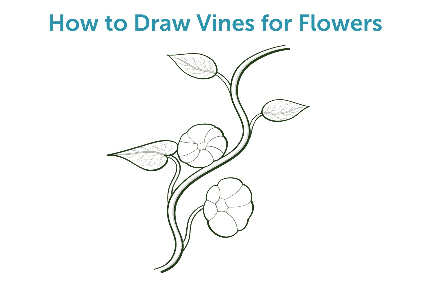 How To Draw Vines For Flowers With Pictures Ehow