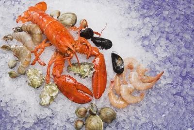 Lobster and other shellfish can raise uric acid levels in the bloodstream.