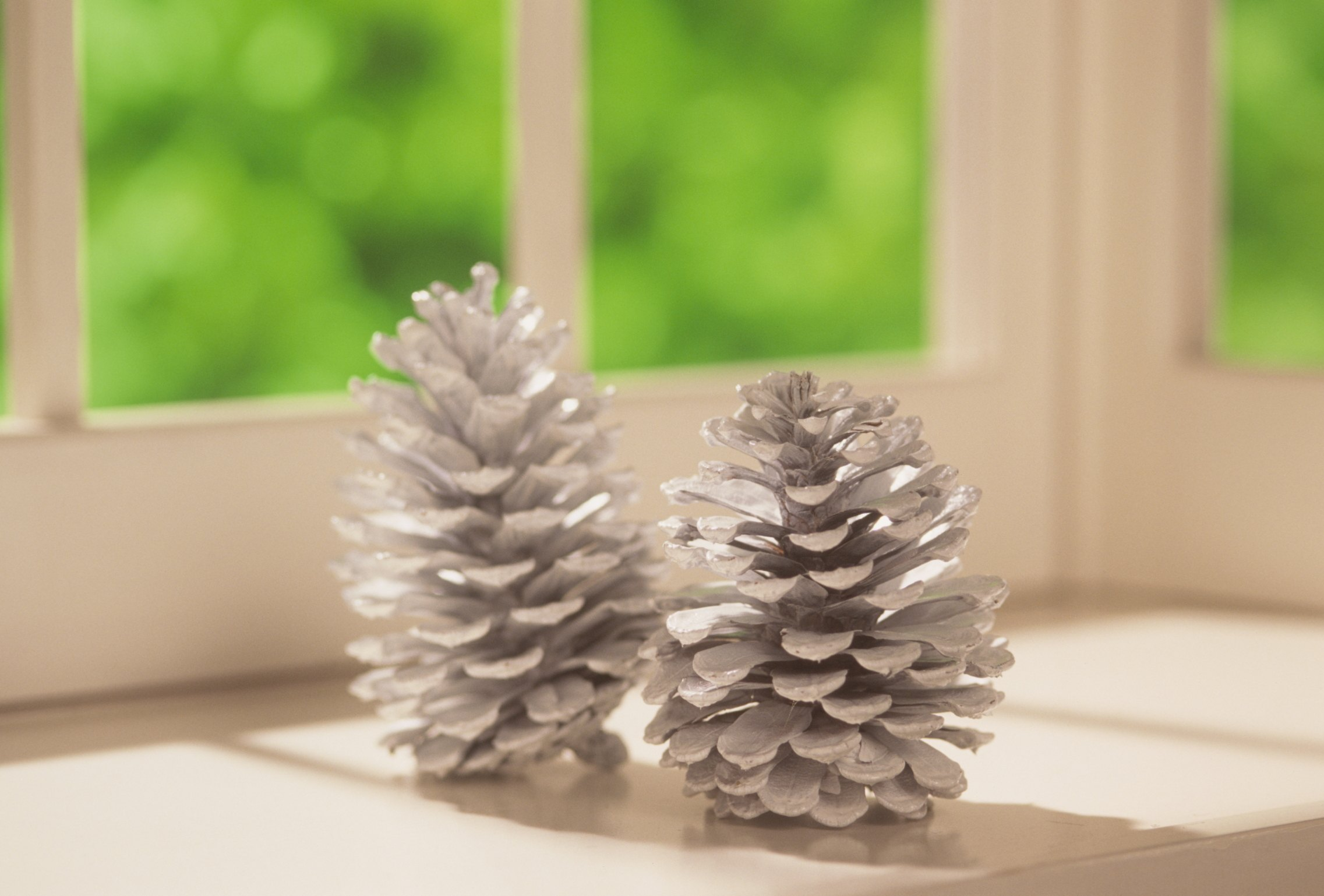 How to make pine cone christmas trees ehow for Pine cone xmas tree