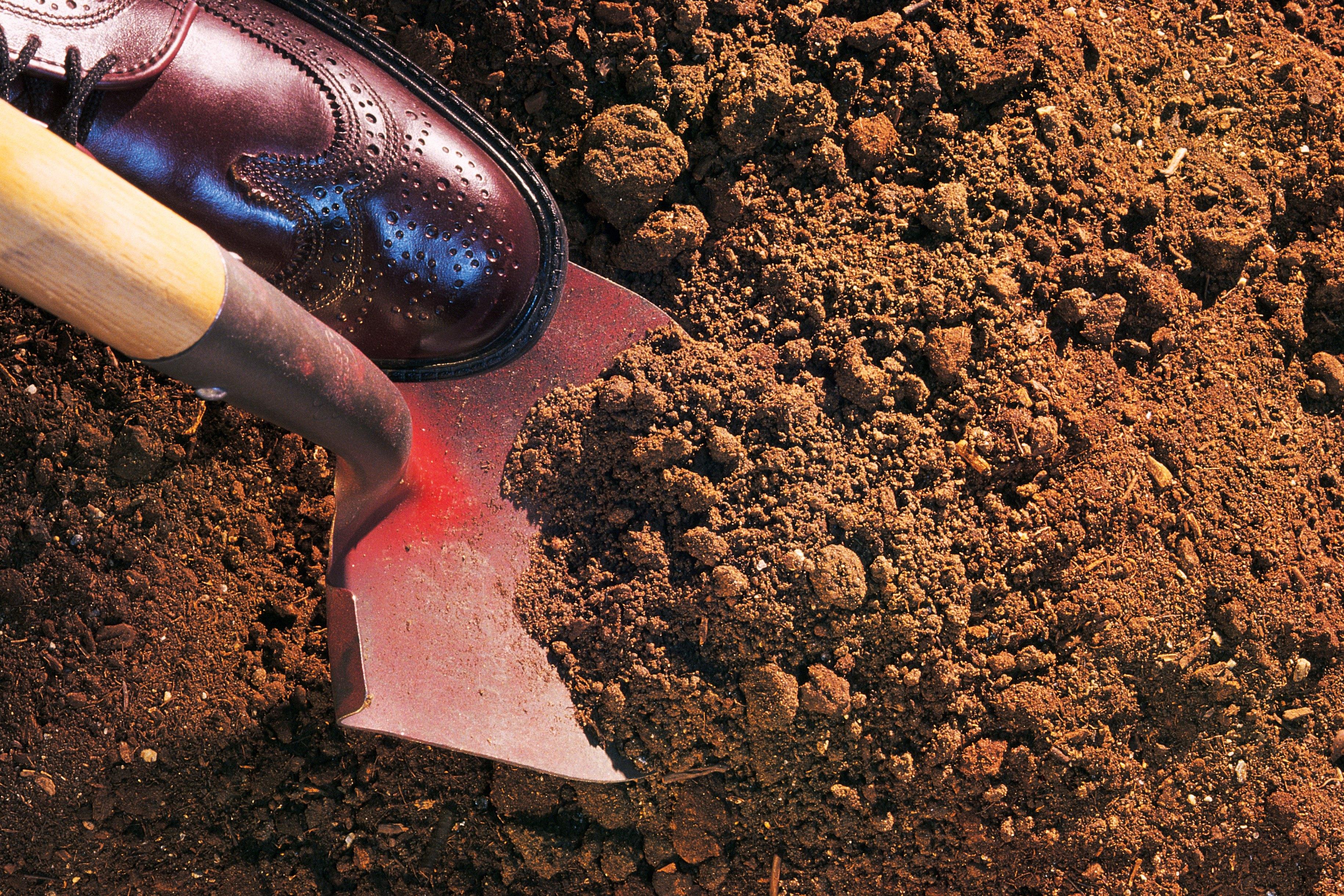 Types of loam soil ehow for Soil not draining